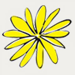Logo-YR-Flower-100x100-1-NEW